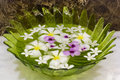 Flowers in a glass bowl Royalty Free Stock Photo