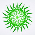 Flowers green ornament detail Royalty Free Stock Photo