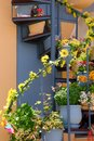 Flowers Growing on External Staircase Royalty Free Stock Photo