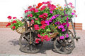Flowers handcart Royalty Free Stock Photos