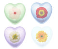 Flowers in heart shapes collage picture of Stock Photography