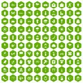 100 flowers icons hexagon green