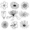 Flowers icons set, vector illustration Royalty Free Stock Photo