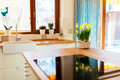 Flowers on kitchen counter Royalty Free Stock Photo