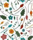 Flowers Leaves and Berries Seamless Pattern Royalty Free Stock Images