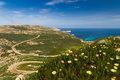 Flowers, maquis and La Revellata lighthouse in Corsica Royalty Free Stock Photo