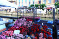 Flowers market milano looking for and plants at annual flower in the characteristic design and and culture area of navigli in Stock Images