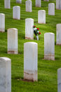 Flowers in a military graveyard Royalty Free Stock Photo