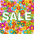 Flowers mix sale Royalty Free Stock Photography
