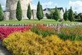 Flowers near old castle Stock Photos