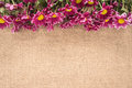 Flowers on a old burlap Royalty Free Stock Photo
