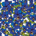 Flowers of pansies and leaves seamless blue background patterns