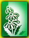 Flowers paper cutting white in green frame Royalty Free Stock Image