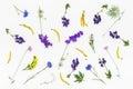 Flowers Pattern On White Backg...