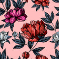 Flowers pions with foliage pattern on pink background Stock Photo