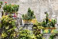 Flowers in Positano streets, Naples, Italy Royalty Free Stock Photo