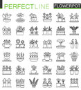 Flowers in pots outline concept symbols. Flowerpot thin line icons. Modern linear style illustrations set.