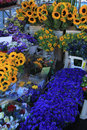 Flowers at a provencal market flowershop with sunflowers Royalty Free Stock Photos