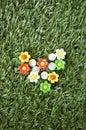 Flowers pushpins Royalty Free Stock Photo