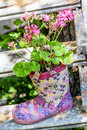 Flowers in a rubber floral boot for garden decoration Royalty Free Stock Photo