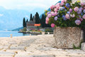 Flowers sea berth in old town Royalty Free Stock Image