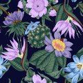 Flowers. Seamless vector background. Exotica. Tropics Royalty Free Stock Photo