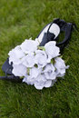 Flowers and Shoes Royalty Free Stock Image