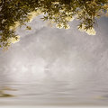 Flowers sky and water background Royalty Free Stock Photo