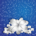 Flowers and snow on a blue background Stock Photos