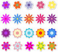 Flowers on Stickers Stock Image