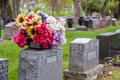 Flowers on a tombstone in a cemetary with headstones the background Stock Image