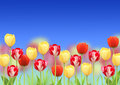Flowers of a tulips on blue sky Stock Image