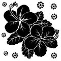 Flowers vector Royalty Free Stock Photo