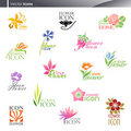 Flowers. Vector logo template set. Stock Photo
