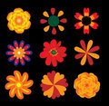 Flowers vector set Stock Photography