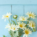 Flowers on vintage wood background close up Stock Images