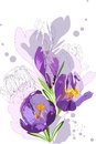 Flowers violet colors sketch of a spring Stock Photos