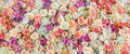 Flowers Wall Background With A...