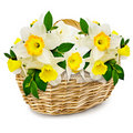 Flowers in the wicker basket Stock Photos