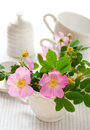Flowers of wild rose in the cup Stock Image