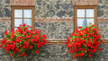 Flowers in window boxes Royalty Free Stock Photo