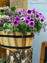 Flowers in wood bucket Royalty Free Stock Photo