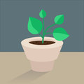 Flowervectoricon vector flat icon plant pot Royalty Free Stock Photos