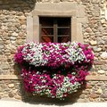 Flowery balcony detail of on a street in potes village cantabria spain Royalty Free Stock Photo