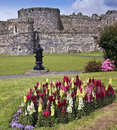 A Flowery Beaumaris Castle on Anglesey, Wales Royalty Free Stock Photo