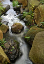 Flowing river stream Stock Photo