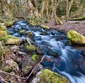 Flowing Stream With Mossy Rocks Royalty Free Stock Images