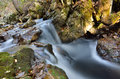 Flowing stream in mountain water through the rocks Stock Images