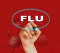 Flu Fotografia Stock
