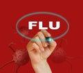 Flu Fotografia Stock
